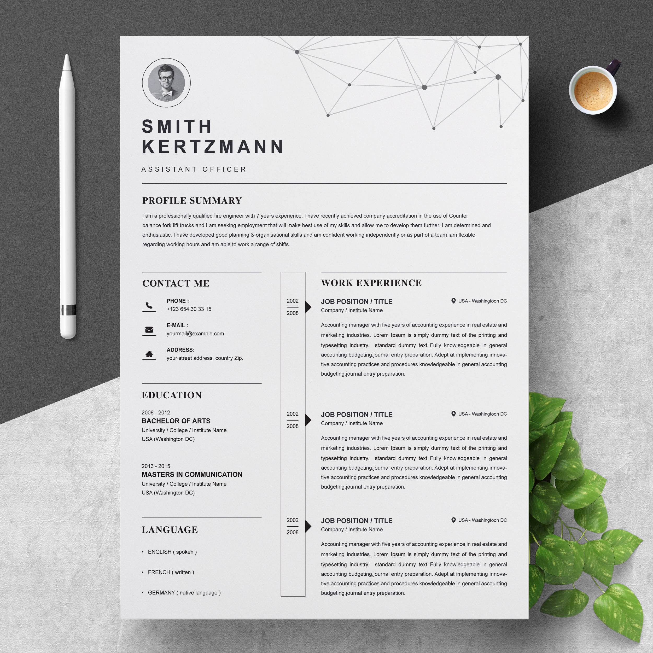 Professional Resume Template Free Resumes Templates Pixelify Net